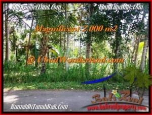 FOR SALE Beautiful PROPERTY 2,000 m2 LAND IN UBUD BALI TJUB506