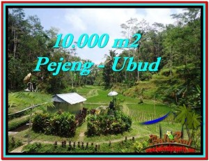 Beautiful 10,000 m2 LAND IN UBUD BALI FOR SALE TJUB519
