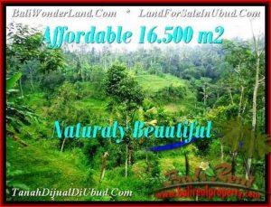 Exotic PROPERTY LAND SALE IN UBUD TJUB494
