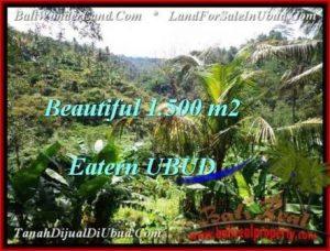 Affordable PROPERTY 1,500 m2 LAND IN Ubud Tegalalang FOR SALE TJUB503