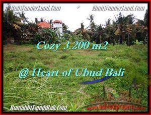 Affordable PROPERTY 3,200 m2 LAND IN Sentral Ubud FOR SALE TJUB510