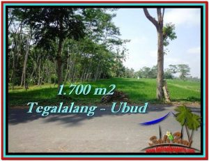 Magnificent PROPERTY LAND FOR SALE IN UBUD BALI TJUB518