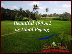 Magnificent PROPERTY 490 m2 LAND SALE IN Ubud Tampak Siring TJUB512