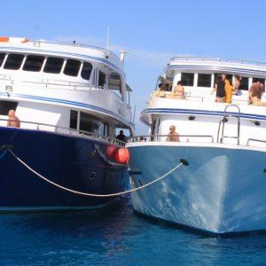 Экскурсия сноркелинг_Тиран из Шарм Эль-Шейха : фото морских яхт в Тиране