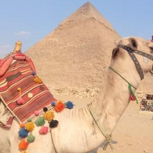 Excursion au Caire-Gizeh de Charm el-Cheikh