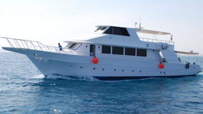 Ras Mohammed Snorkelling Trip Sharm El Sheikh