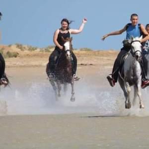 Морская верховая езда на лошадях в Хургаде