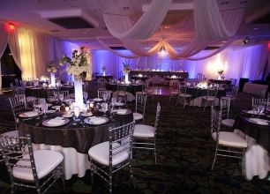 Violet LED Up Lights with White Sheer Draping