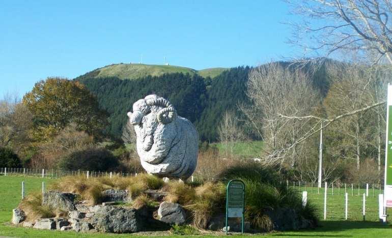 agrodome sheep farm tour