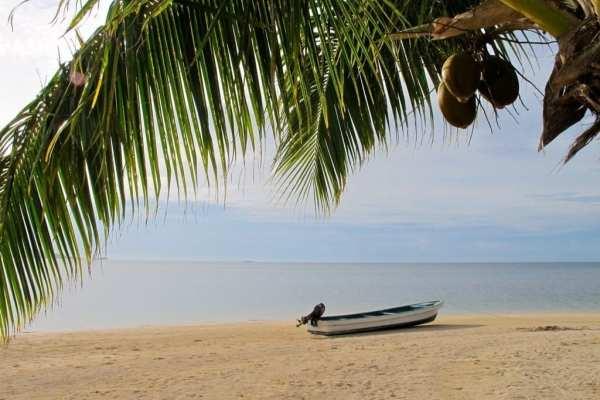 Fiji Beach by Angie Orth