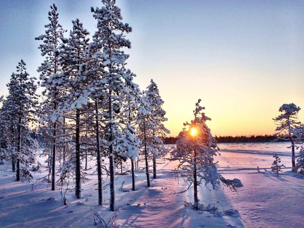 Ranua Lapland Finland