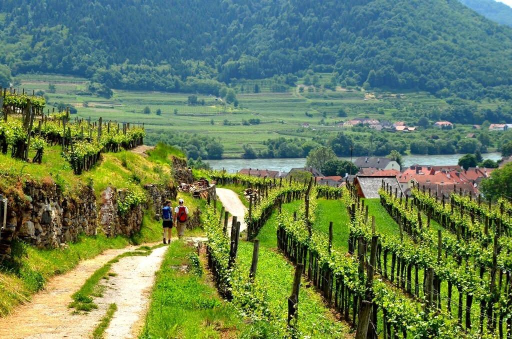 Spitz Austria Wachau Valley