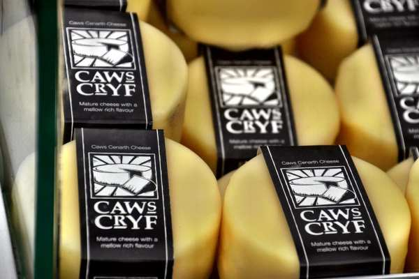 Welsh Cheese Wales UK