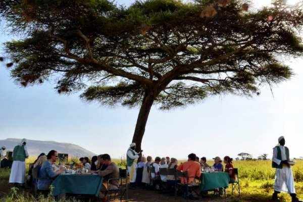 Serengeti Tanzania Africa