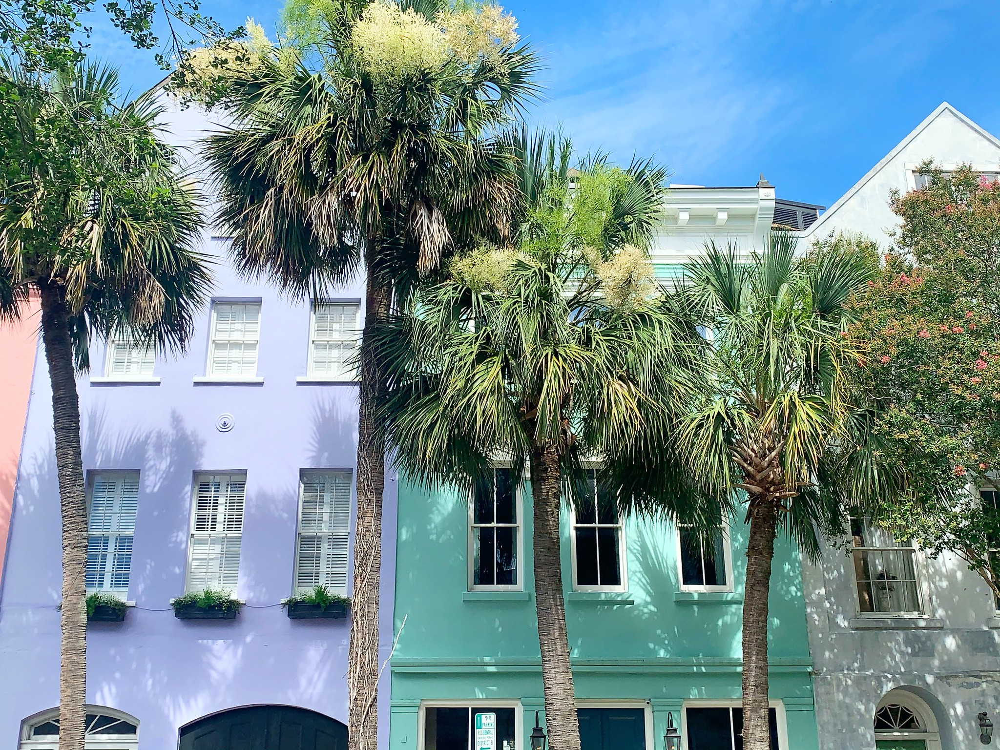 Favorite Photos From My First Trip to Charleston