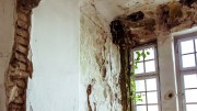 Be Prepared for Mould in the Winter Months