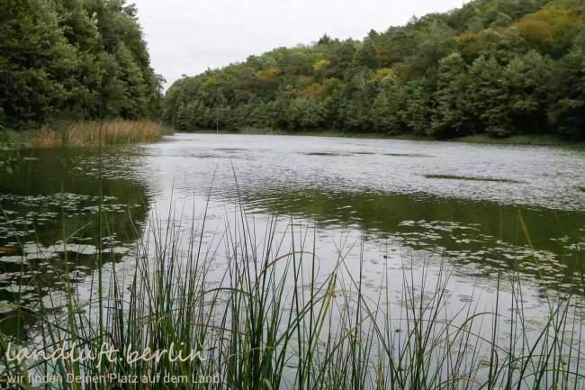 Forsthaus in wunderschöner Naturlage in der Nähe von Berlin zu verkaufen, See