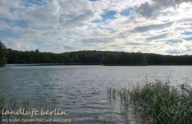 Blick vom Steeg auf den Kalksee