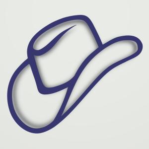 cowboyhat1
