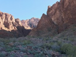 Hiking Palm Canyon