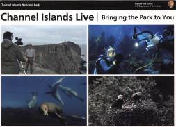 Images of some of the wonders of the islands. The park provides live feeds to cameras on the islands!