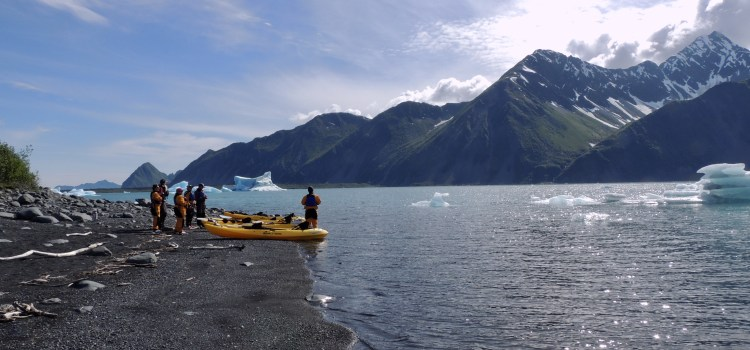 Kayaking at Bear Glacier in Kenai Fjords National Park