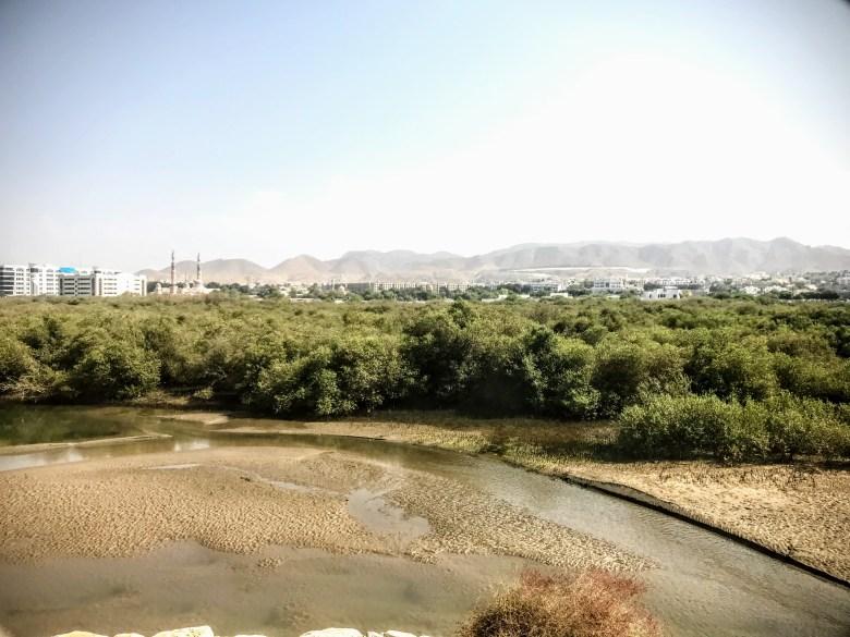 Qurm nature reserve, Muscat, Oman