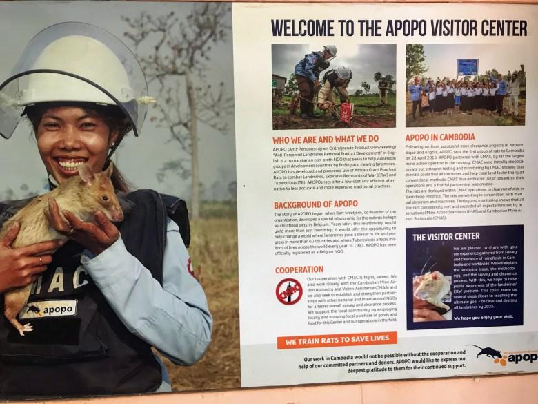 APOPO visitor centre, Siem Reap, Cambodia