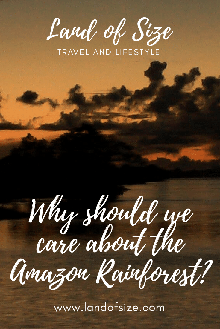 Why should we care about the Amazon rainforest?