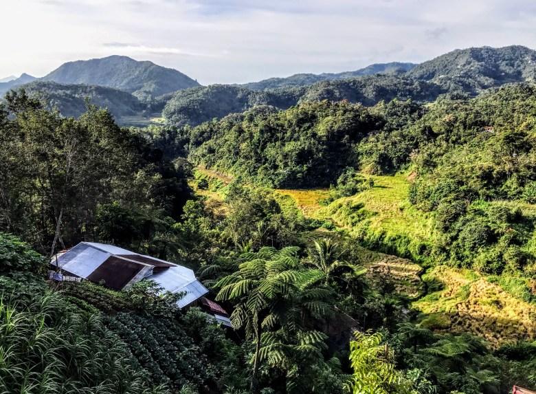 View from Banaue Evergreen Hostel, Banaue, Philippines