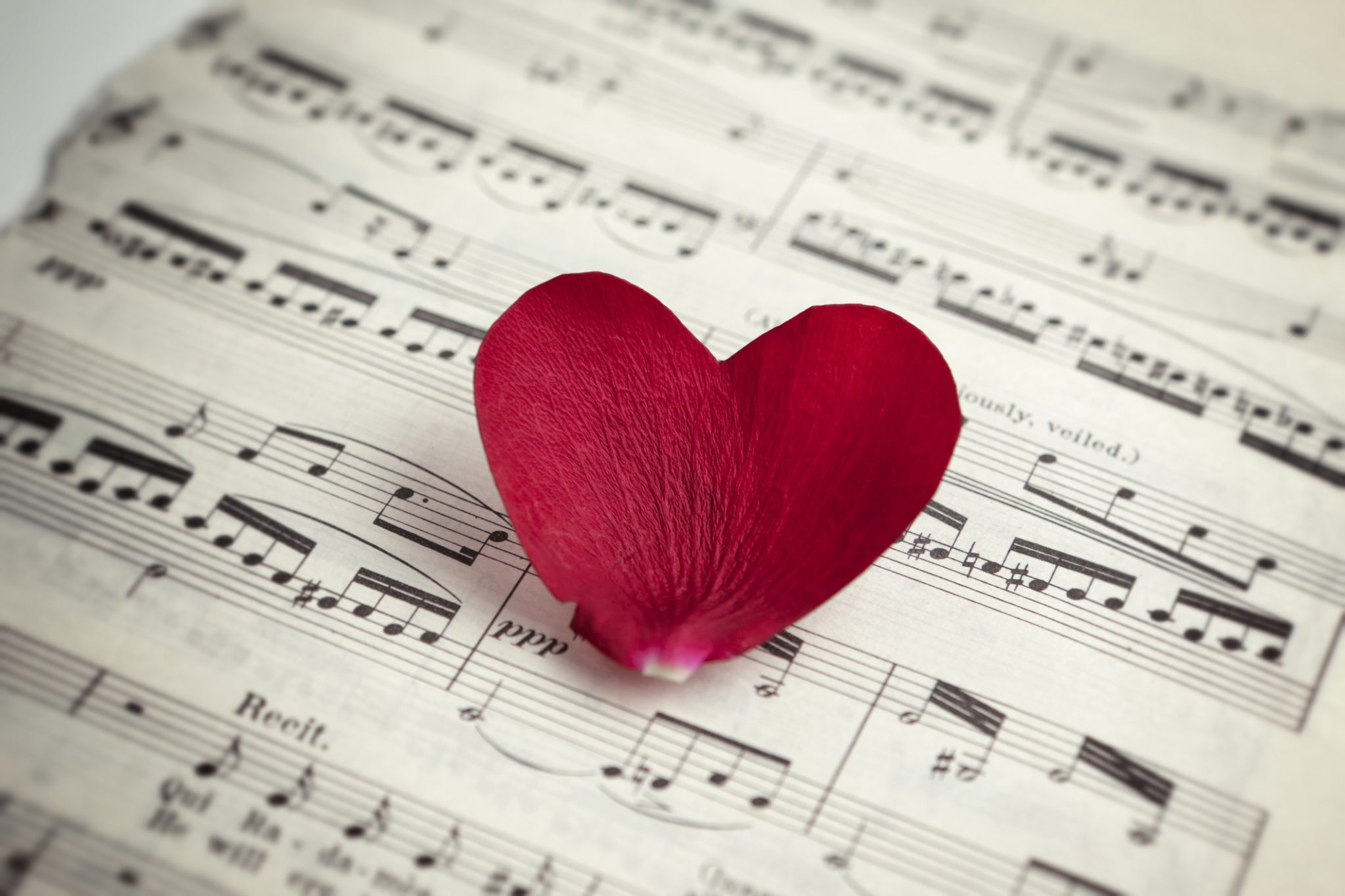 Heart petal on music