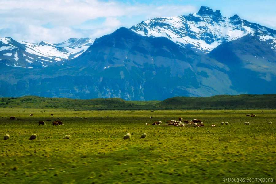 A picture of the Andes Mountains in Patagonia, Argentina