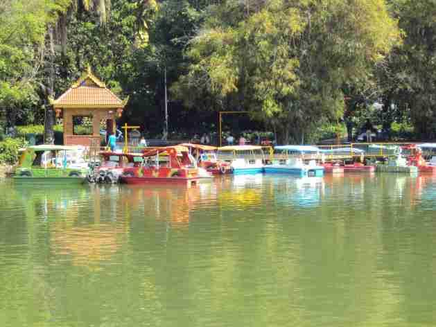 See in Jinghong