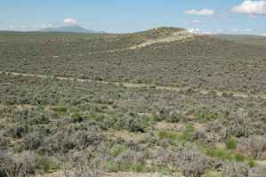 Land Sale Elko Nevada