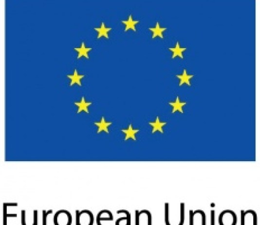 European Union (EU) Recruitment 2020 for Budget Officer