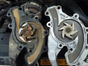 Dex cool leak around the timing chain cover  Land Rover Forums  Land Rover Enthusiast Forum