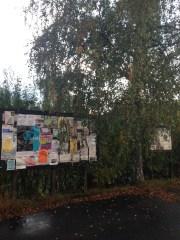 Björken skymmer anslagstavlan och flera tyckte att trädet skulle tas ner.