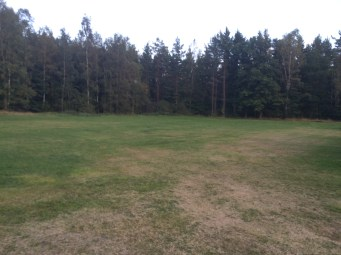 """Denna gräsmatta klipps av de som bor intill. """"Kanske några fotbollsmål"""" var ett önskemål."""