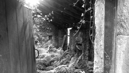 Inside the orchard hourse at Ardkenless Castle