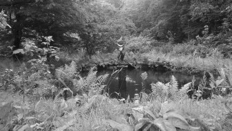 Grounds of Ardkenless Castle