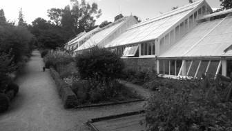 Greenhouse, Crathes Castle