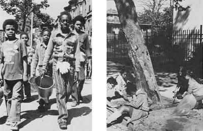 BEDIT_Back-UrbanTrees_05_SD_LAM_Bedford-Stuyvesant Neighborhood Tree Corps_1970s_3 copy