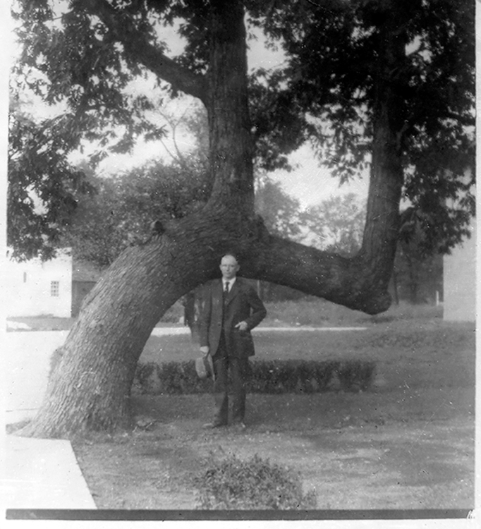 The landscape architect Richard Gloede in front of the Fuller Lane Tree in Winnetka, Illinois. Image courtesy of the Winnetka Historical Society.