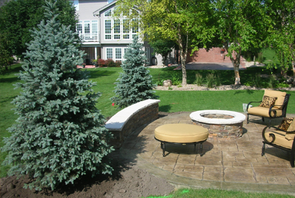 Types of Trees for Landscaping | Most Popular 2016 on Backyard Landscaping Ideas With Trees id=23296