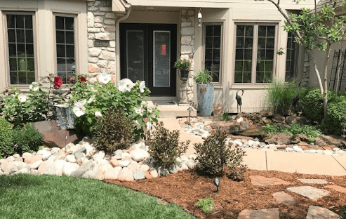 front of house white rose of sharon hibiscus shrubbery stone and mulch