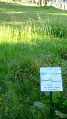 sign about native flora