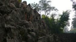 Rock Garden 05