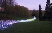 Winter+Light+Waddesdon+Bruce+Munro+W0LlpGe0aWMx