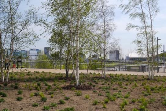 Olympic Park14