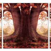 Tree In The Fall Triptych Photo